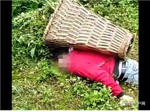 可�z,�雄母享一男子上山打�i草摔了一跤,不幸死亡!