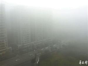 辐射雾来袭 成都一夜变仙境 19日左右四川将再次降温