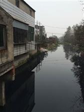 城隍镇这条渠道污水直排汉江