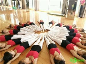 邓洁芭蕾舞校公开课→舞动的精灵,是那么的柔美自信!