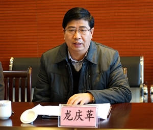融水县人大主任龙庆革到怀宝镇调研