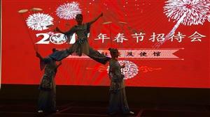 """安徽省""""欢乐春节""""赴埃及访问演出(临泉杂技)活动首场演出圆满成功"""