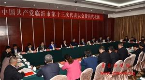 张宏伟到费县代表团参加讨论审议