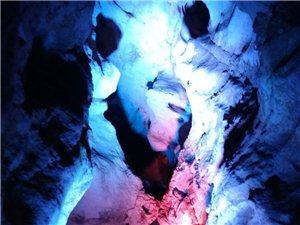 2月26日,专家学者探秘西乡猿人洞