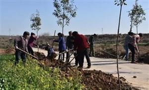 郏县林业生态建设持续健康发展