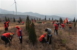 绛县青年志愿者为美丽家园添新绿