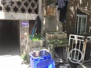 广安女子出租屋内自杀,15天后才被发现~!