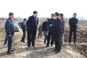 王金调研东四乡扶贫、种植结构调整和美丽乡村建设工作开展情况