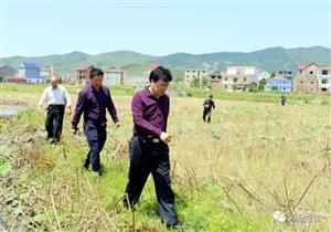 县政协主席刘海林在闪石乡推进复礼书院重建工作