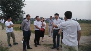 武汉睿康达新能源技术有限公司来黄梅考察洽谈项目