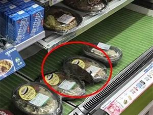 全家南京西路地铁店惊现大老鼠 已责令停业下架