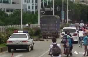 【交通要闻】昨日东山大桥上发生一起交通事故