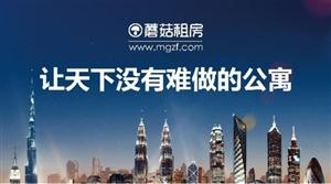 蘑菇租房聚焦南京,让天下没有难做的公寓