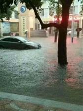北海市排水处加强巡查奋力排涝