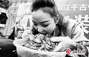 丽江一景区举行吃昆虫大赛 冠军5分钟吃1.23公斤