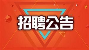 2017年涞水县招聘中小学、幼儿教师145人公告