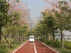 首条国家步道将在陕开建 计划在2019年投入使用