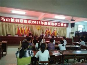 马山镇召开妇联基层组织改建和换届工作会