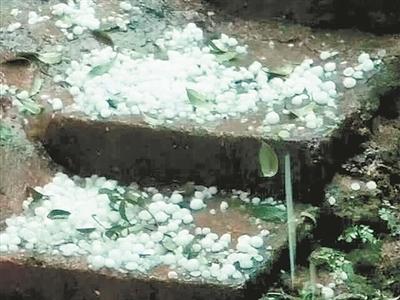 安溪午后突下冰雹全市高温仍将持续
