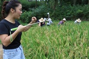 光山县南向店乡简榜村这位女大学生出名了,干了件特别时髦的事!