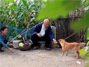 凌源市红山影像群在三十家子镇裂山梁村举行摄影基地揭牌仪式