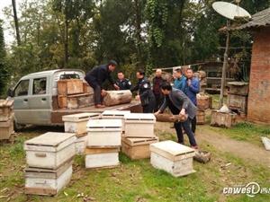 汉中土蜂大盗被民警擒获 为蜂农追回50箱土蜂