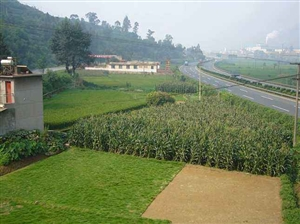 临沂2个县区5个乡镇街道入围省级 创业型 县区