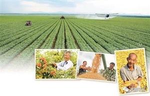 统计局解读:新型农业经营主体蓬勃发展 农业现代化步伐加快