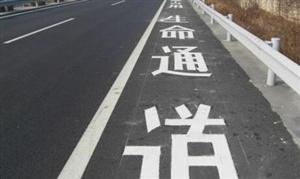 道路不熟查导航 违法停车被处罚