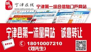 宁津在线网站转让
