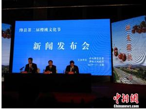 山西绛县借助樱桃产业推动农业供给侧改革