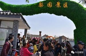 莱阳梨花节&樱花节盛大开幕!