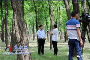"""民权县委副书记、县长张团结接受央视""""第一时间""""专访"""