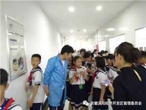 小学生社会实践活动