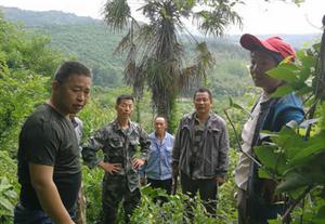 坝陵林业管站为民调解林权纠纷