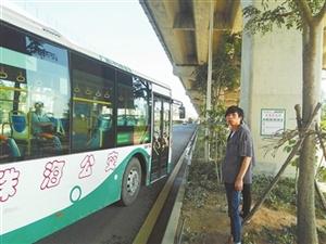 南琴路8对公交站台有牌无亭 乘客站在绿化带上候车 城建集团:力争3个月内建好