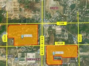 国土资源局拍卖出让迎宾大道2宗国有建设用地使用权