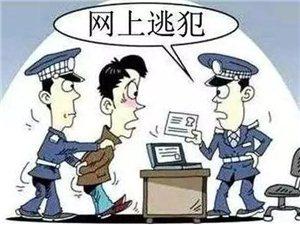 亮剑出击 涡阳警方两天抓获三名逃犯