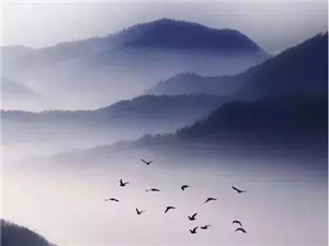 """【国学文化】长阳农商银行:流传千古的名句背后,都有一个被""""致敬""""的原作!"""