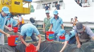 永利娱乐场官网市举办增殖放流活动 600多万尾鲷科类鱼苗放归大海