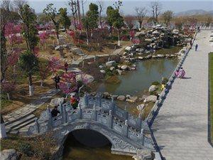 守护绿色,让城市更美 ——滨江新区天汉文化公园