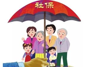 社会保险政策解读