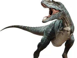 """保定首届黄金周嘉年华―恐龙科普展;带你重返""""侏罗纪"""""""