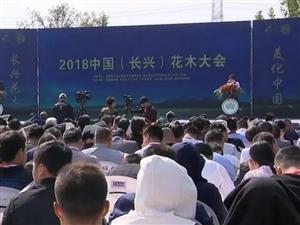 2018中国(长兴)花木大会签订苗木订单3.7亿