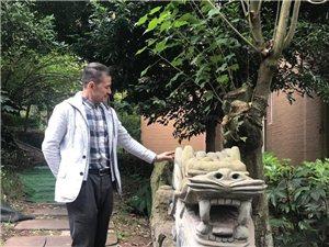 """泸州瑞丰公馆小区惊现""""石龙"""",业主褒贬不一已被移走"""