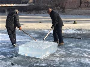 零下20度,这儿的汉子们像割豆腐一样取冰!