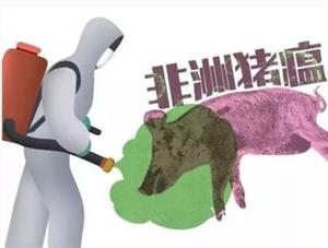 """嘉祥人注意!""""非洲猪瘟疫情""""消息肆虐,专家:不传染人!"""