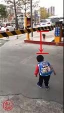 哈哈哈!现在的孩子安全意识真强!这视频我也就看了一百遍!