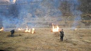 注意了!涉县五村民因野外违法用火被拘留!