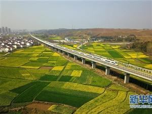 """西成高铁汉中段:""""开往春天""""的列车"""